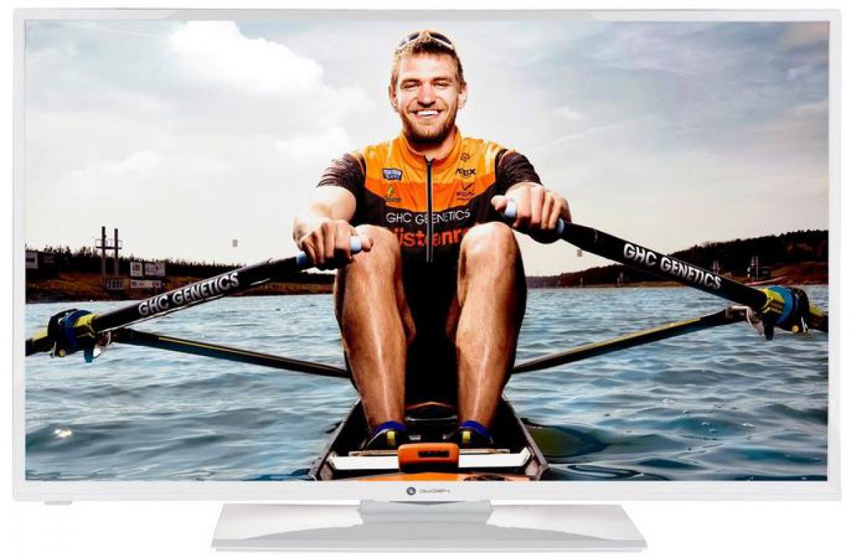 Televizor Gogen TVF400N550STWEBW