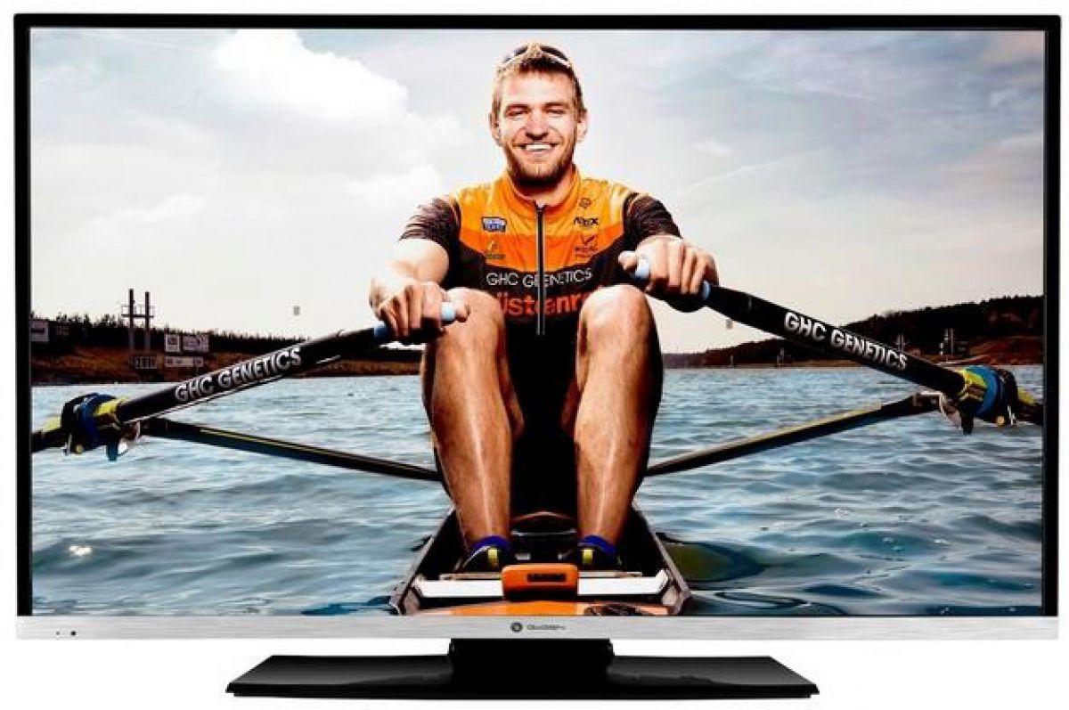 Televizor Gogen TVF43N384STWEB