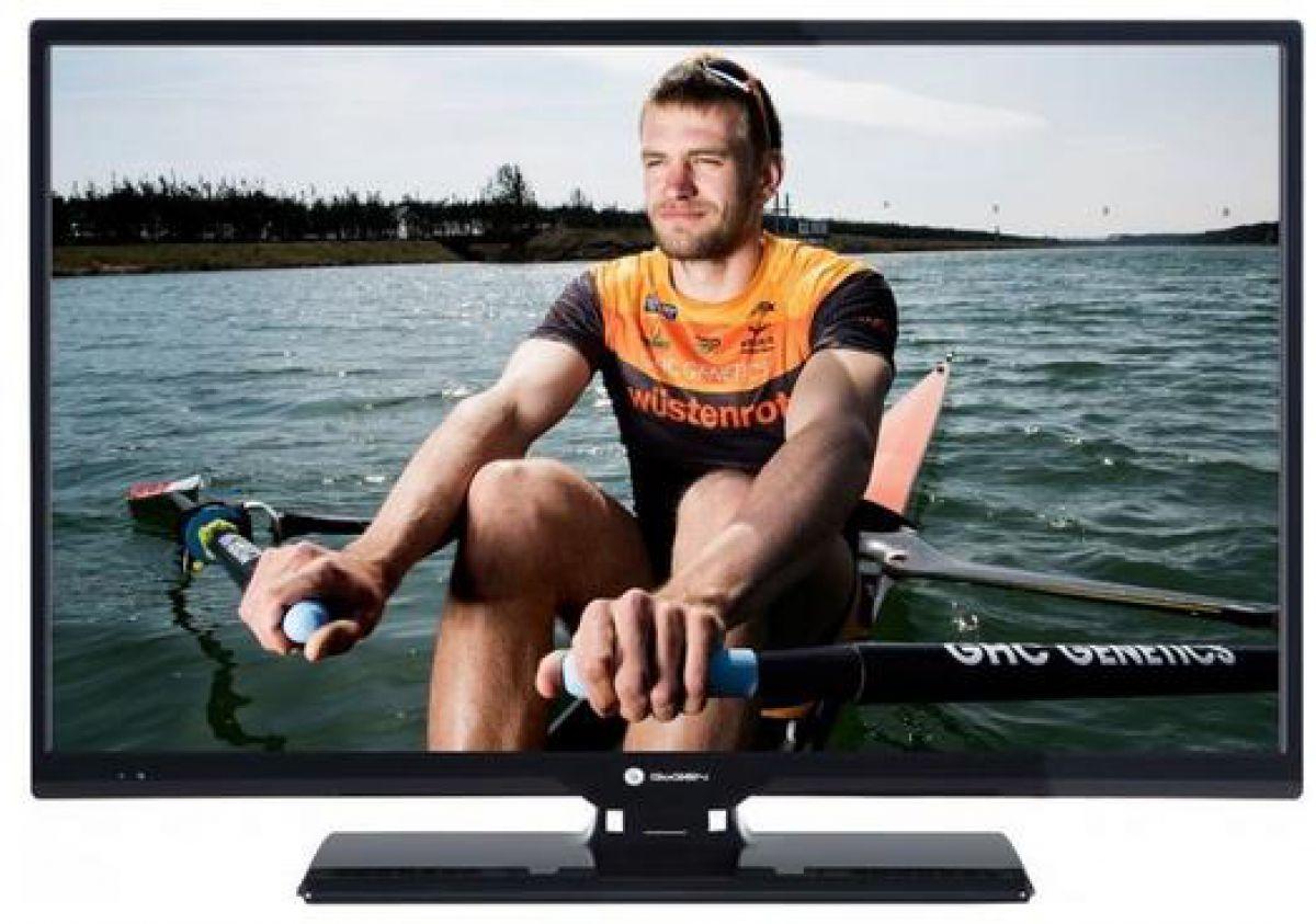 Televizor Gogen TVH24N266T