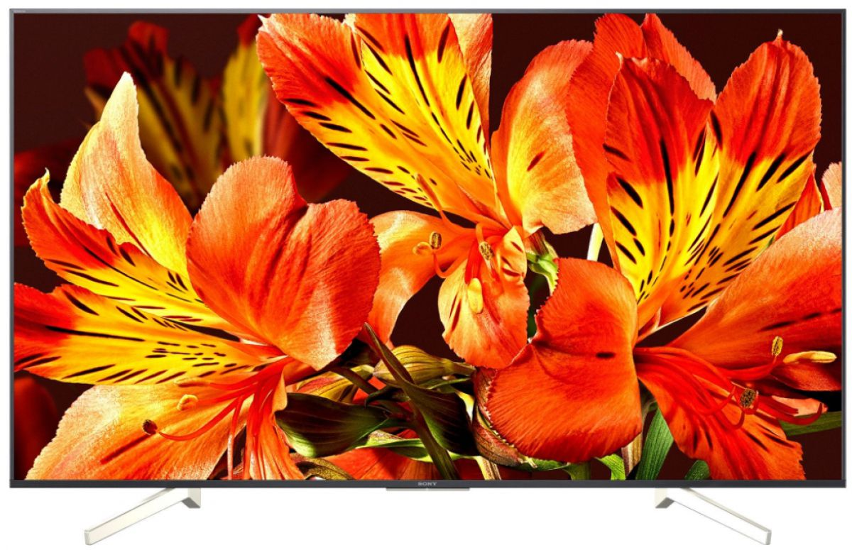 Televizor Sony KD-49XF8505