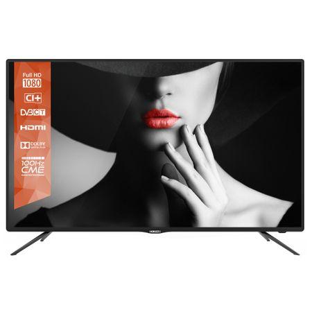 Televizor Horizon 43HL5320F